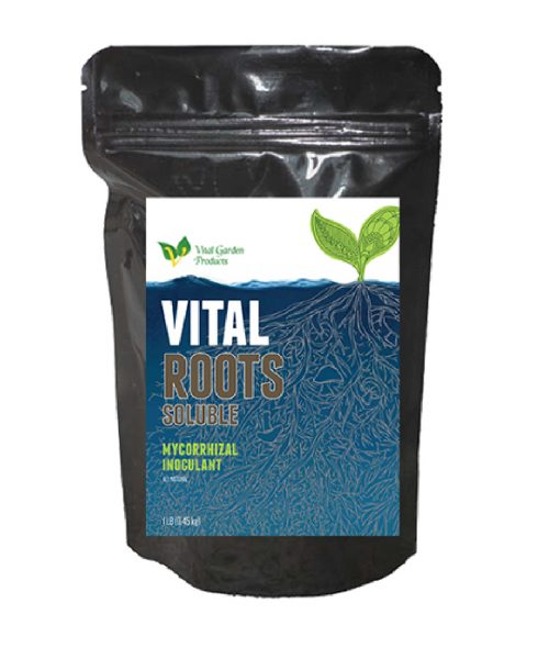 Vital Roots